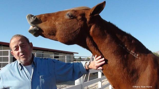 Bob and Mustang Sally
